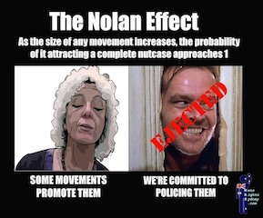The Nolan effect - 289 x 240